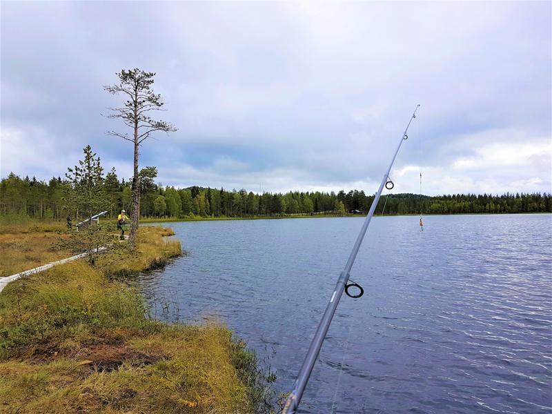 Fishing for Arctic Char above the Arctic Circle